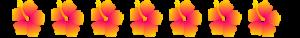 hibiscus banner 3